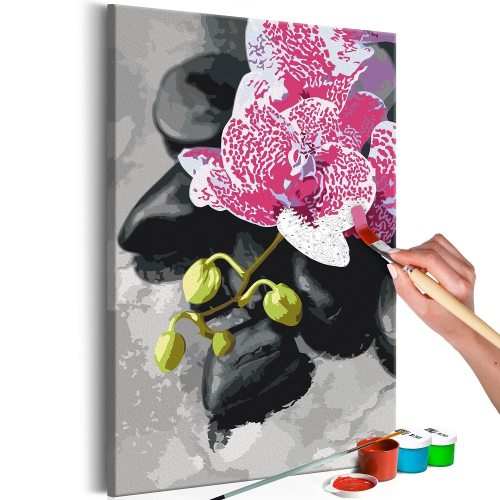 Malování podle čísel - Pink Orchid 40x60