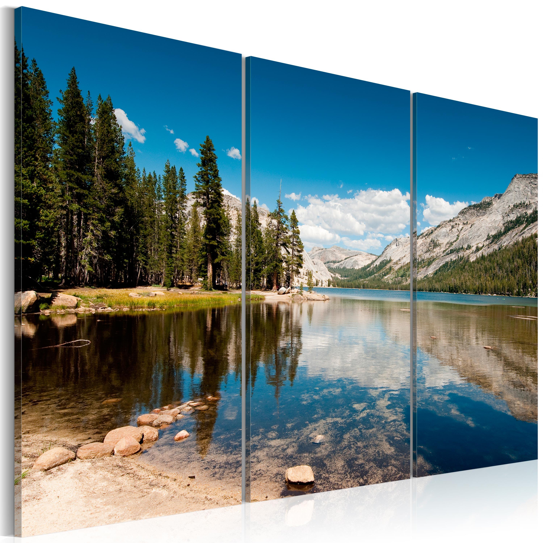 Obraz - Hory, stromy a křišťálové jezero 120x80