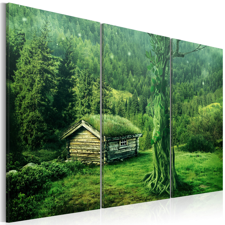 Obraz - Forest ecosystem 60x40