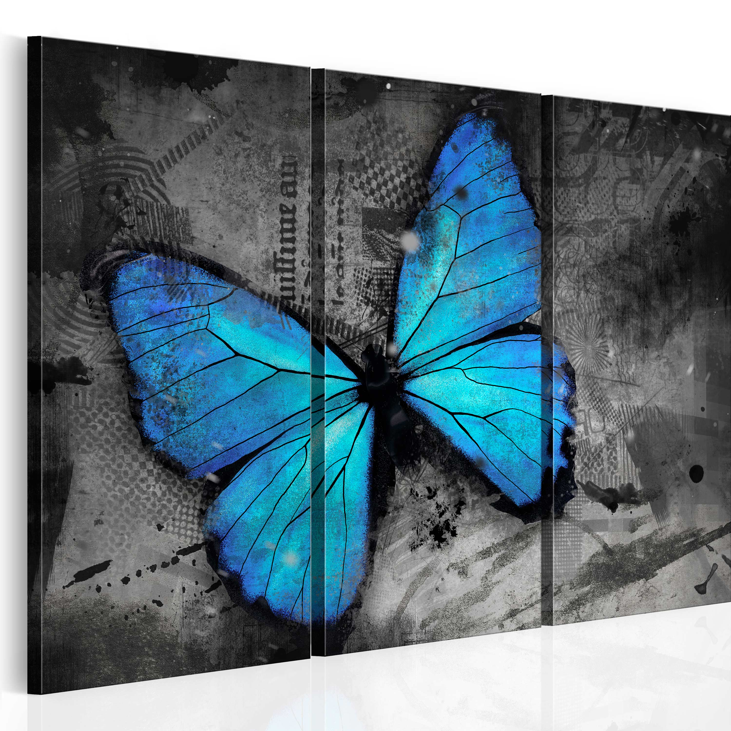 Obraz - The study of butterfly - triptych 120x80