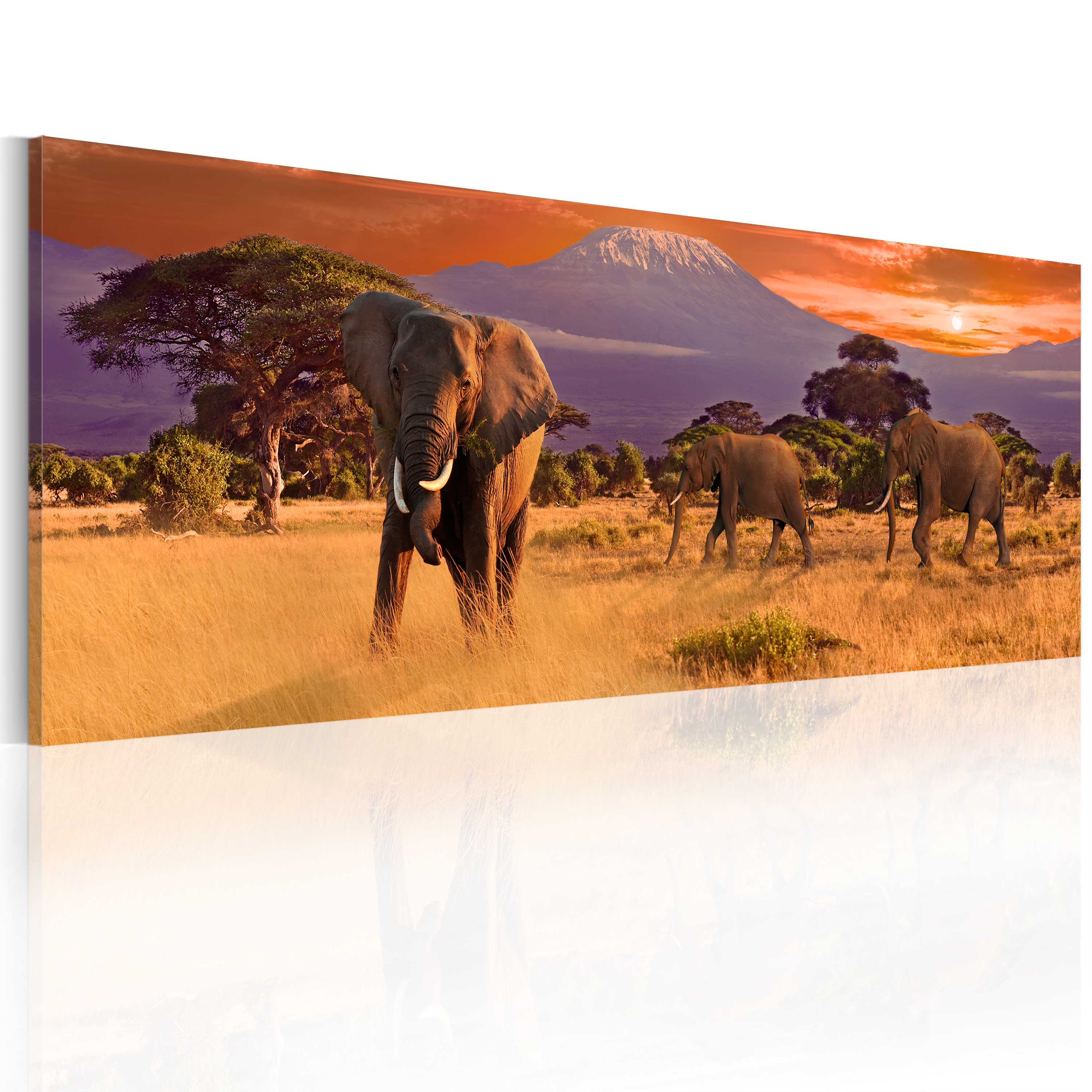 Obraz - March of african elephants 135x45