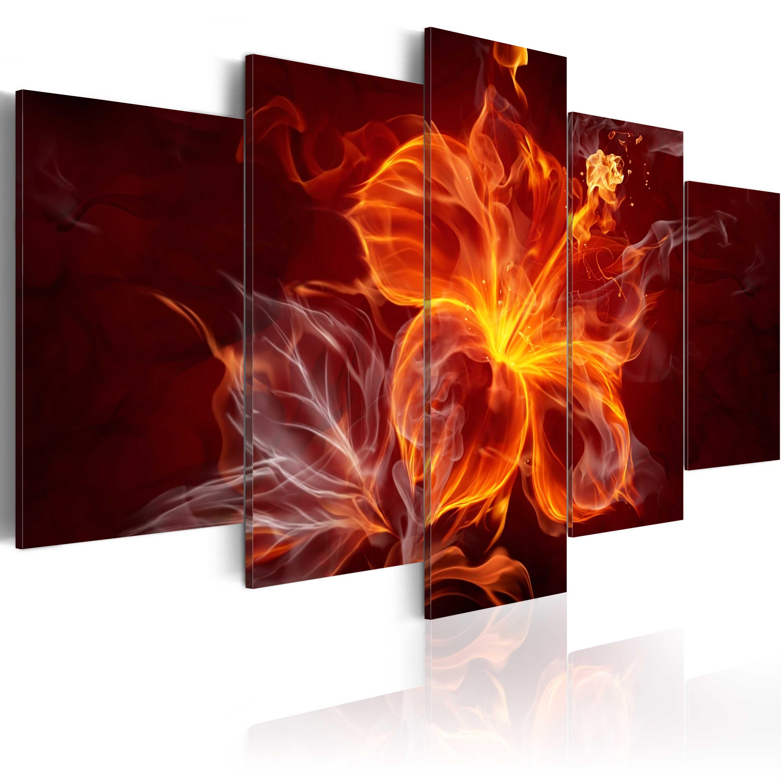 Obraz - Fiery mallow 100x50