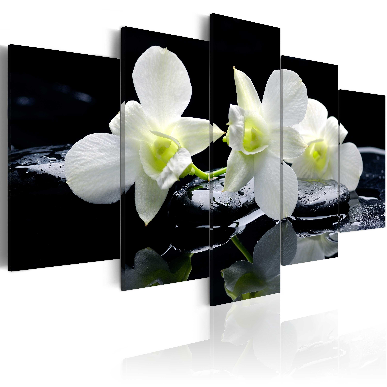 Obraz - Melancholic orchids 200x100
