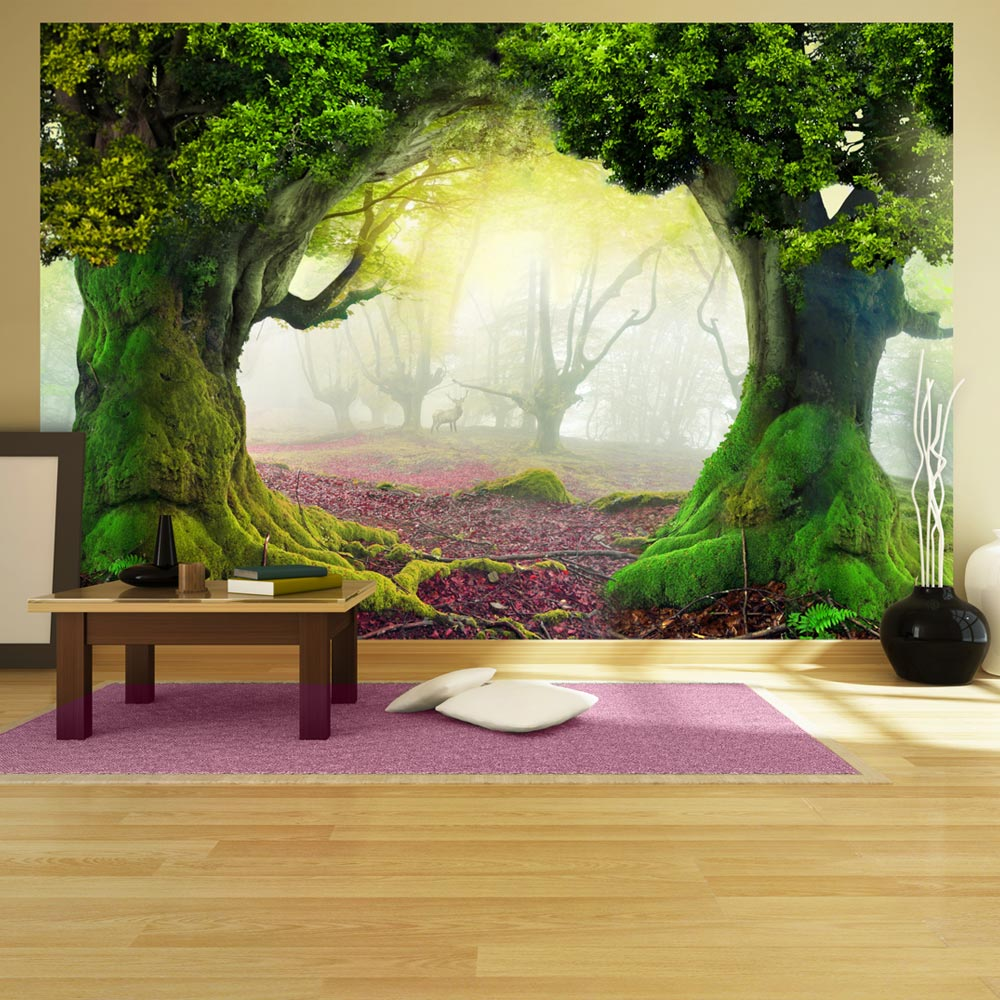 Fototapeta - Enchanted forest 200x140