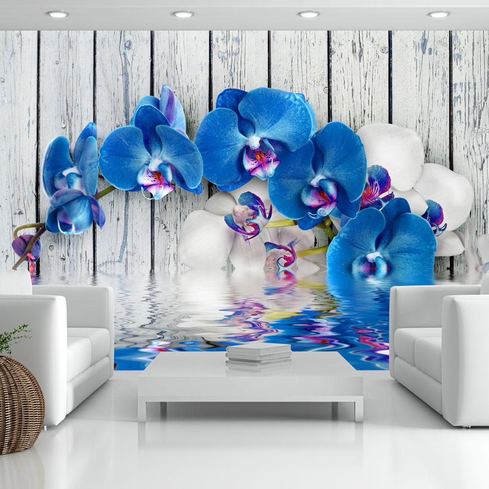 Fototapeta - Cobaltic orchid 250x175