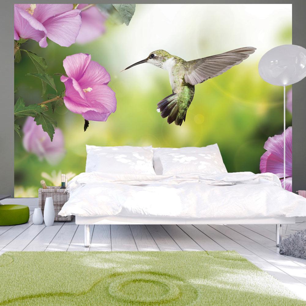Fototapeta - Humming-bird 150x105