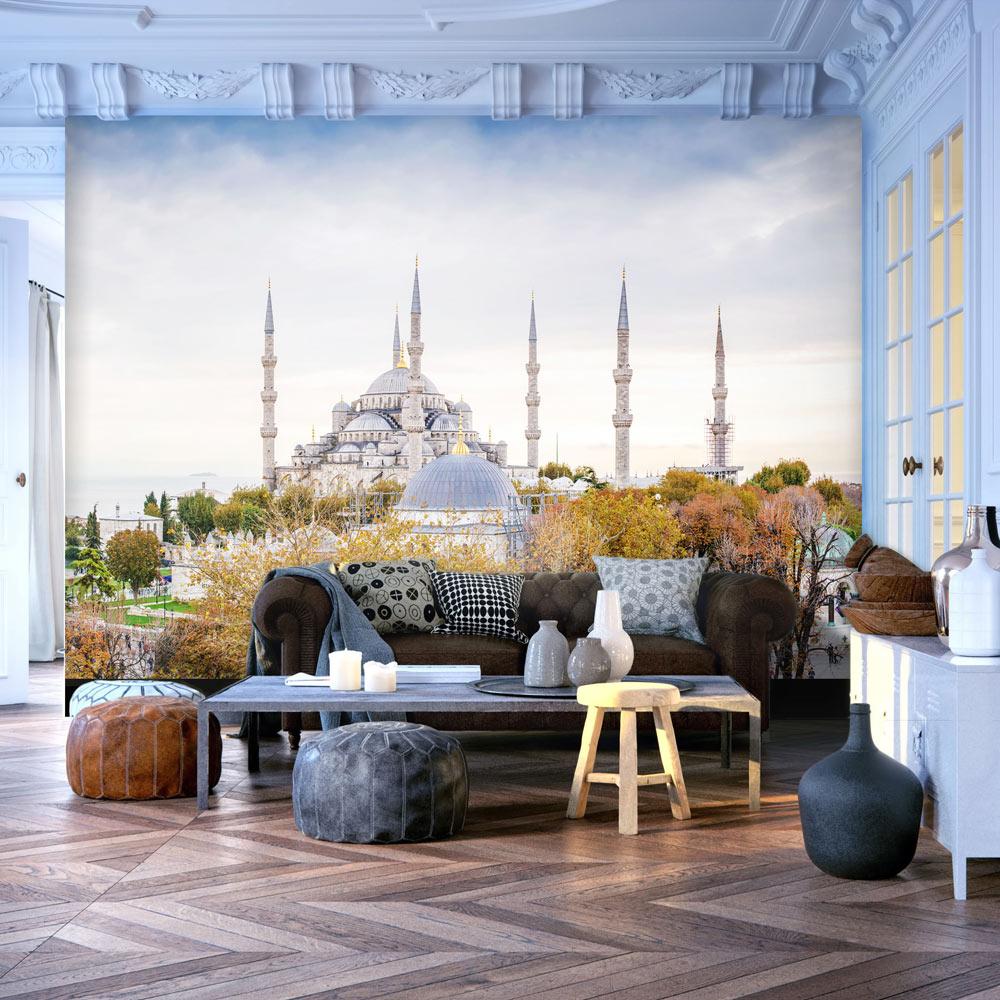 Fototapeta - Hagia Sophia - Istanbul 100x70