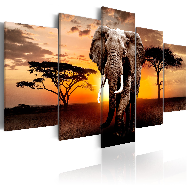 Obraz - Elephant Migration 100x50