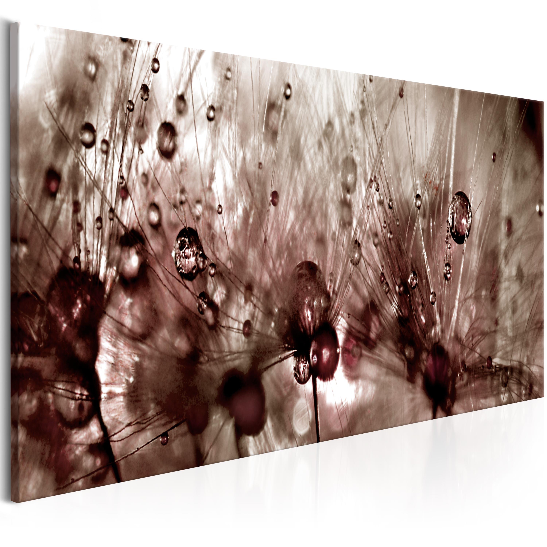 Obraz - Dandelions After Rain 120x40