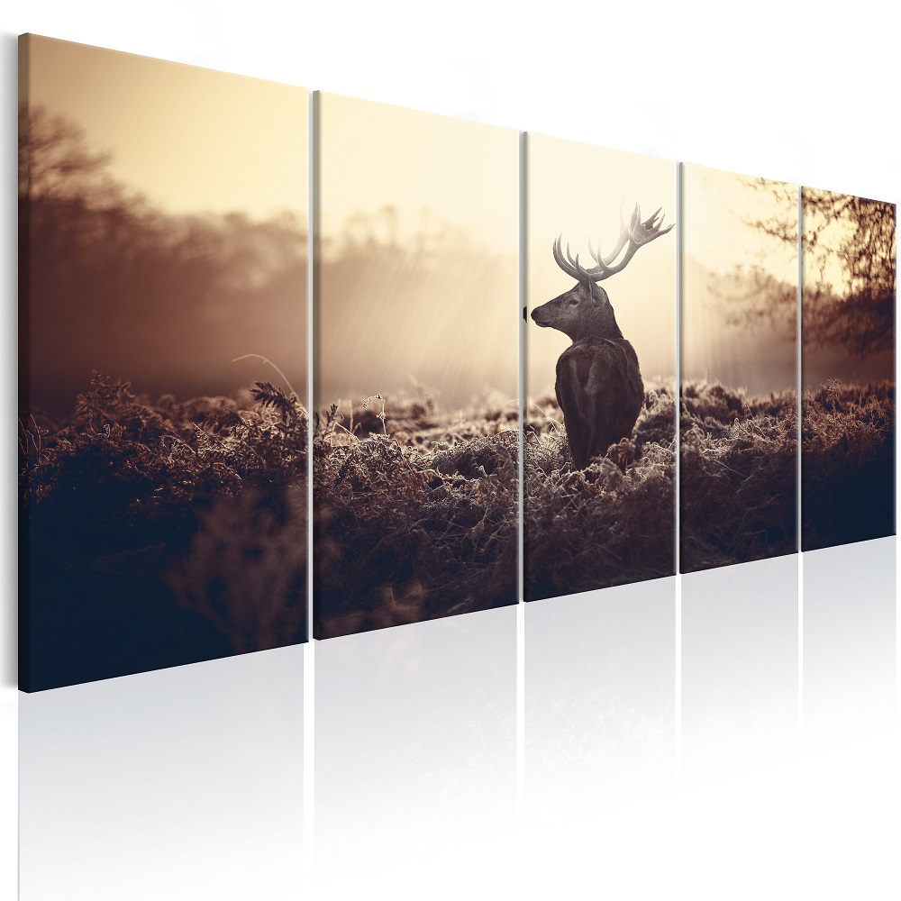 Obraz - Stag in the Wilderness 200x80