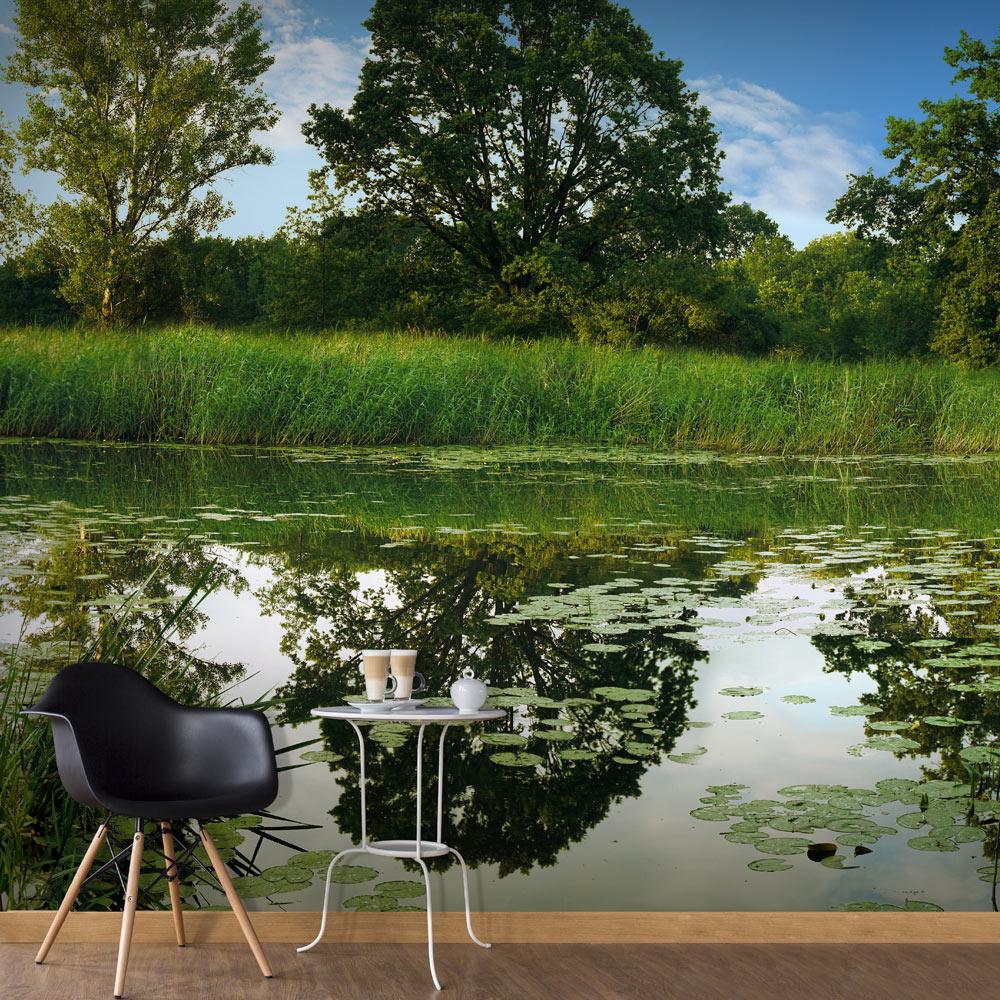 Fototapeta XXL - The Magic Pond II 600x280